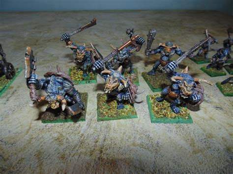 Daxio's Uneventful Day: Age of Sigmar Beastman Army