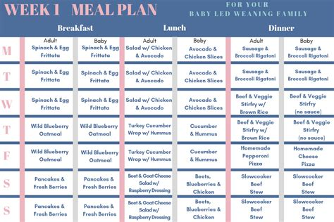 Baby Led Weaning Family Meal Plan - Family Style Nutrition