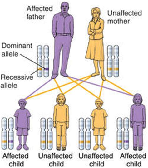 Dominant gene | definition of Dominant gene by Medical