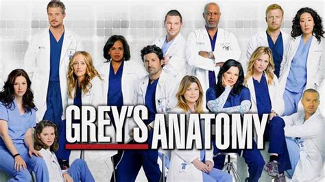 Grey's Anatomy Season 17: Release Date, Cast, Story, And