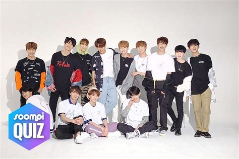 QUIZ: Which SEVENTEEN Line Would You Have The Most Fun