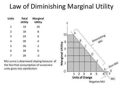 Law of Diminishing Marginal Utility - Graph and Example